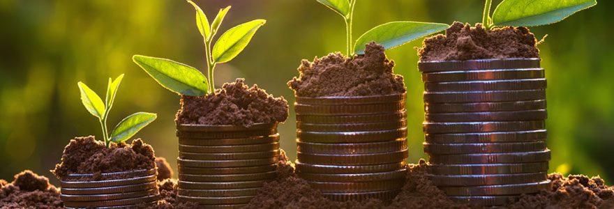 Investir dans un groupement forestier