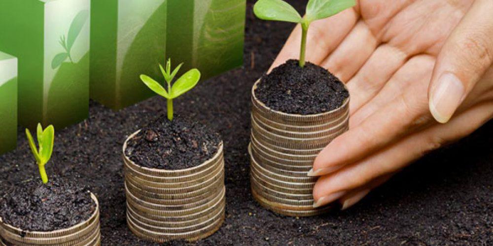 Conseils pour optimiser vos placements financiers