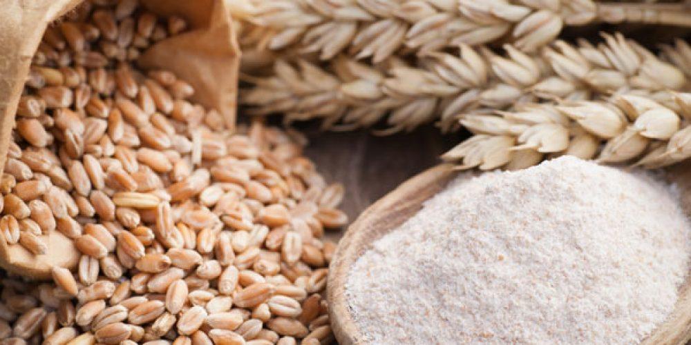 Les différentes variétés de céréales